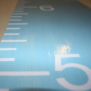Blue Growth Chart Ruler